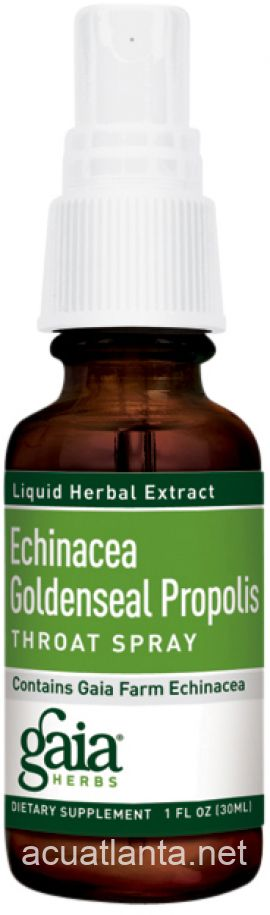 Echinacea Goldenseal Throat Spray 1 oz