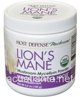 Lion's Mane Powder 100 grams