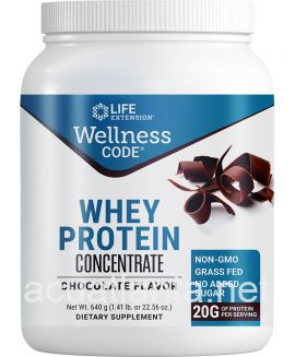 Wellness Code Whey Protein Concentrate 640 grams Chocolate