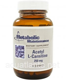 Acetyl L-Carnitine 250 mg 60 capsules
