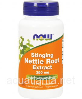 Stinging Nettle Root Extract 90 veggie capsules 250 milligrams