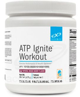 ATP Ignite Workout 30 servings Natural Mixed Berry
